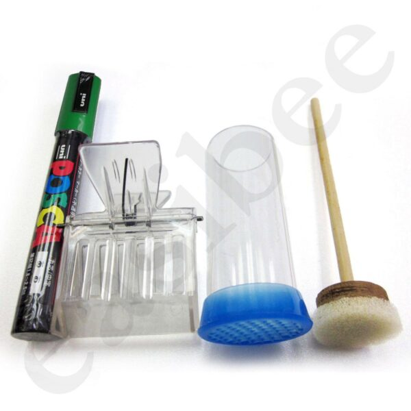 Queen Bee Green Marking Marker Set 2019 Pen Clip Plunger Beehive Bee Keeping